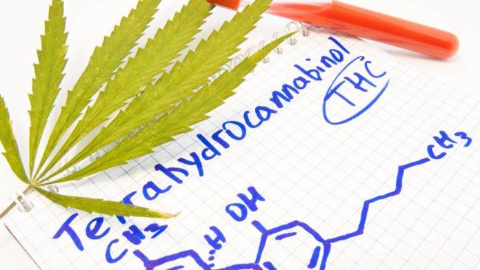 thc drog teszt